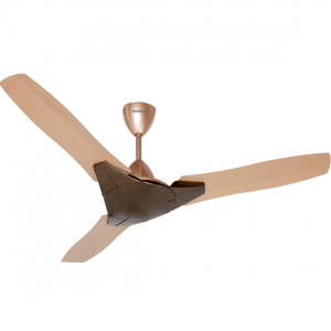 HAVELLS Ceiling Fan~Troika 1200 mm sweep HONEY CHAMPAGNE